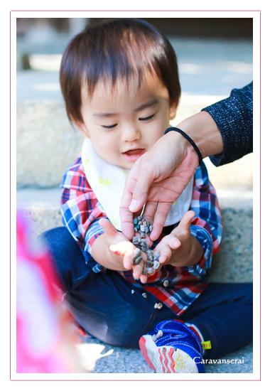 七五三写真,出張撮影,知立神社,刈谷ハイウェイオアシス,愛知県知立市・刈谷市,データ納品,ナチュラル,自然な,おしゃれ