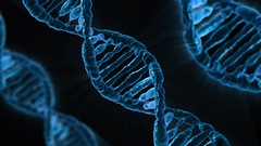 DNA,圖片來源:Pixabay