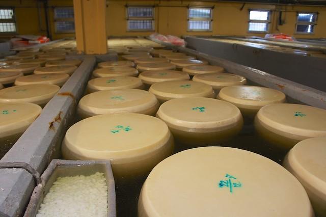 salt-bath-parmigiano-parma-italy-cr-brian-dore