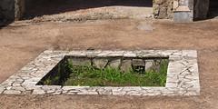Pompeii 106