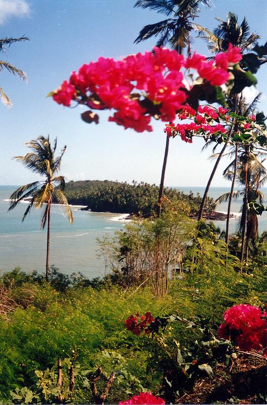 guyane, îles du salut