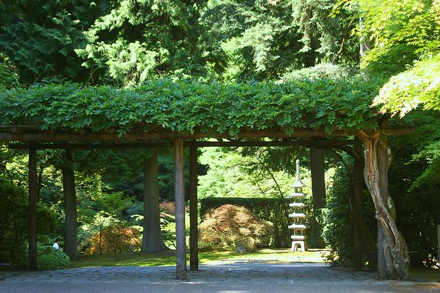 1_wisteria_entrance