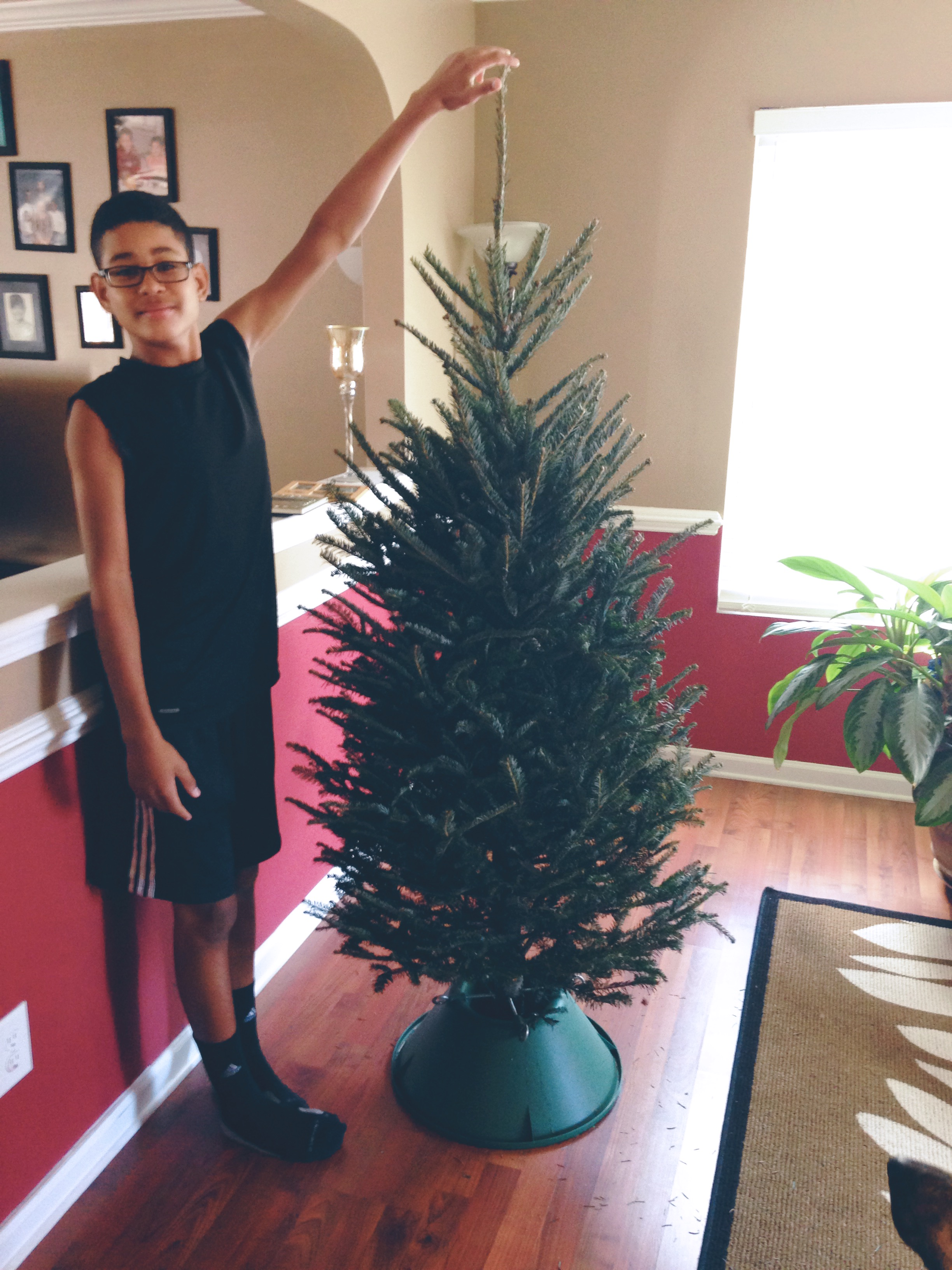 elijah christmas tree