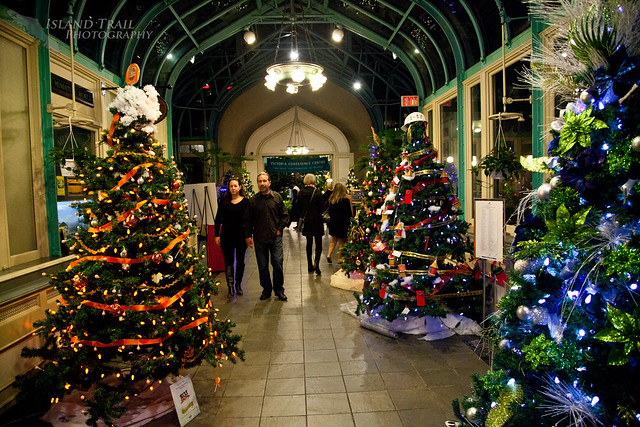 Festival of Trees - 2014.12.19-9518