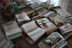 sorting seeds IMG_1302