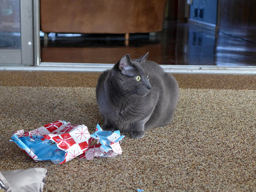 2014-12-25 - Opening Presents - 0268 [flickr]