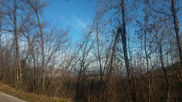 campo invernale 13 - 14