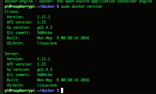 docker-version.png