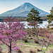 2016 Spring Fuji by shinichiro*