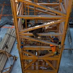 The base of the crane at #Fabrik in #Toronto #LifeStoreys