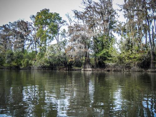 us unitedstates southcarolina kayaking paddling tillman savannahriver lcu lowcountryunfiltered newlanding stokesbluff