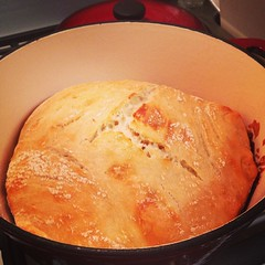 My first Artesian bread....no knead...in a cast iron Dutch oven...I have died and gone to heaven
