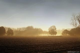 Rural Susteren (Nl)