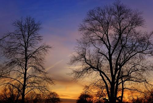 park city sunset sky urban usa tree nature boston america photoshop town unitedstates massachusetts elements labs dxo common bostoncommon hdr topaz 3xp photomatix