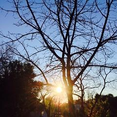 24 December 2014 #sunset #samespotforayear #christmaseve