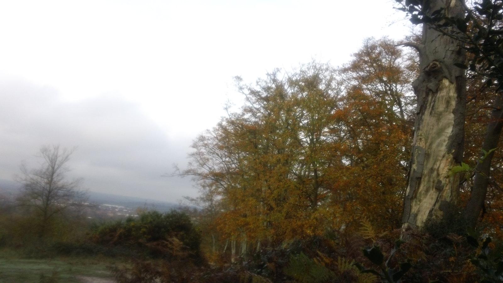 View towards Waltham Cross