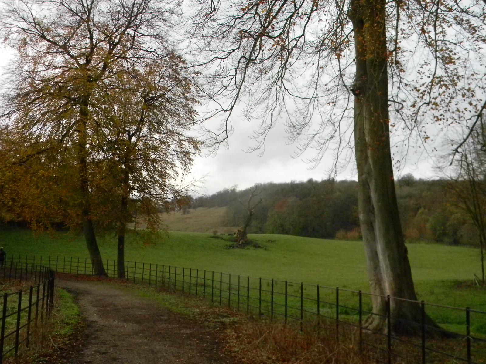 Gatton Park Merstham to Tattenham Corner