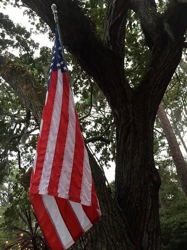 flag flags adamhall usflag trackhead trackheadstudios trackheadxxx