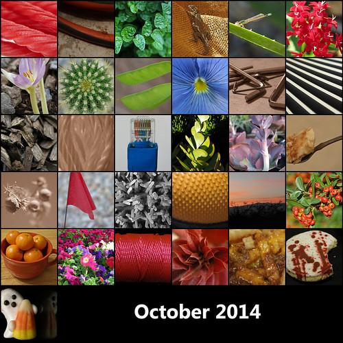 2014:365 October Mosaic