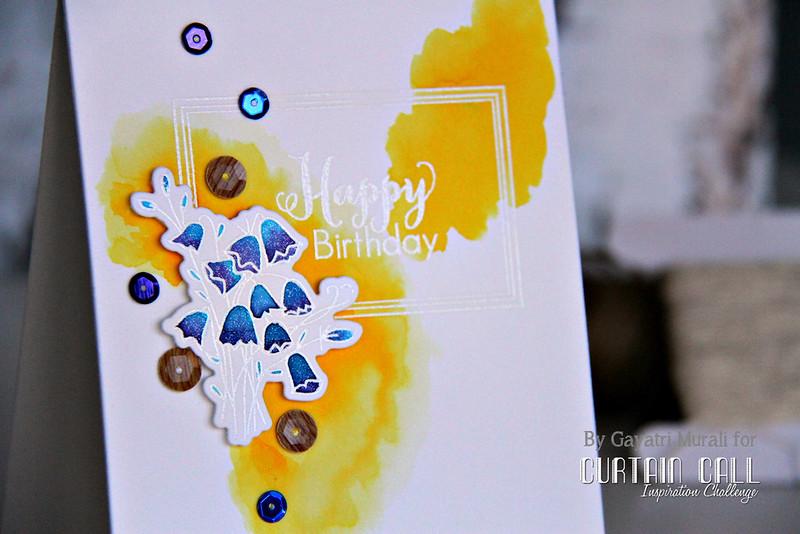 Happy Birthday closeup1