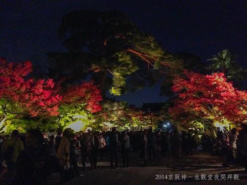 2014京阪神-永觀堂夜間拜觀9801_001