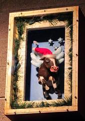 Countdown to Christmas 2014