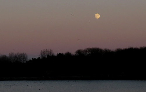 The moon at Tophill Low NR, East Yorkshire January 2015
