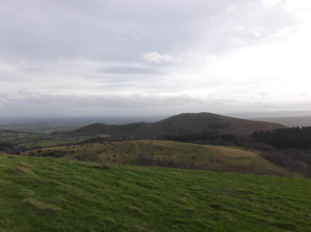 breidden hill 036