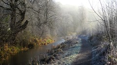 Cold Cromford Canal