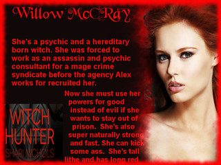 Witch Hunter-Willow Bio