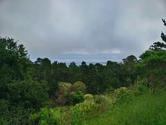 17 Miles Drive - View of Carmel Bay