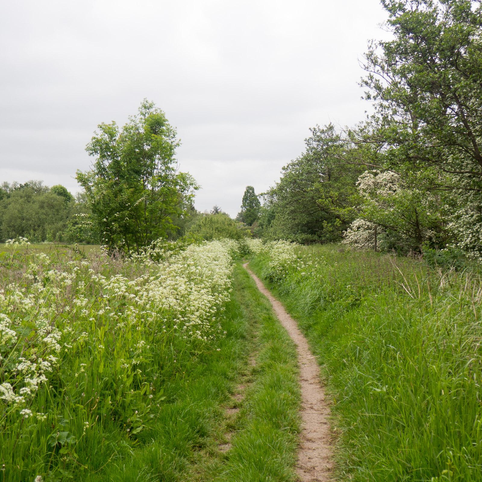 """P5250187 www.walkingclub.org.uk/book_3/walk_61/index.shtml"""" rel=""""nofollow www.walkingclub.org.uk/book_3/walk_61/index.shtml"""
