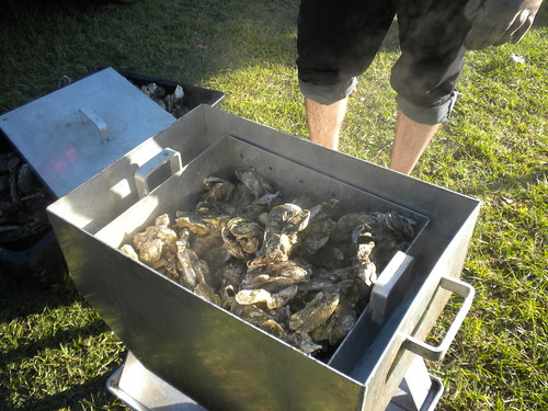 camera autumn shells man hot cooking animals dinner dead view oven mud legs sauce muscle knife cook fresh steam dirt gross smell heat carolina seafood oysters hungry alive shins sodium thermal stinky apparatus mollusc mollusk bivalve huitres austern estuarine esturaine