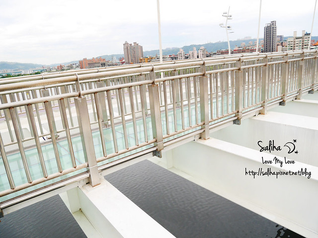 板橋景點新月橋 (11)