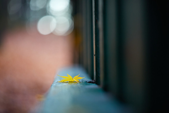 Photo:Autumn Afternoon By:chibitomu