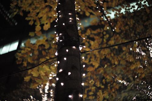川崎工場夜景-47