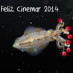 Festival CineMAR, #Colombias first #ocean #documentary #film #festival starts tomorrow in #Bogotá!! 23 days to #Christmas, but only 1 for Cinemar! Book your free place by emailing your name to us at: info@festivalcinema.org  Festival CineMAR, el primer #