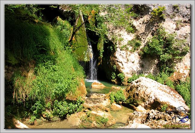 Río Urederra (8)