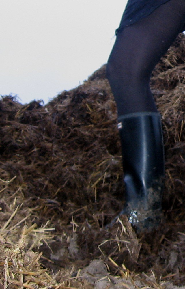 Schuhe 2019 Sommer Männer Hausschuhe Flip-flops Hohe Qualität Eva Strand Sandalen Nicht-slip Männer Hausschuhe Indoor & Outdoor Schuhe Zapatos Pantuflas Perfekte Verarbeitung