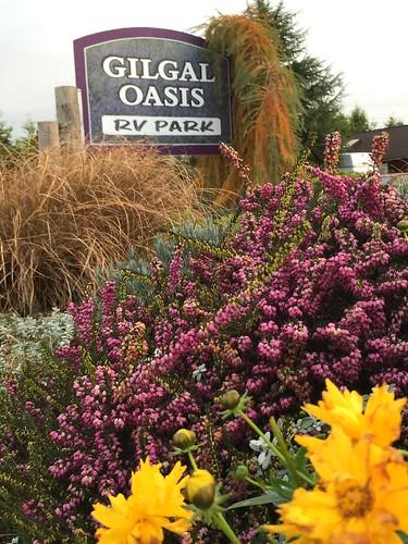 Gilgal Oasis RV Park Sequim, WA