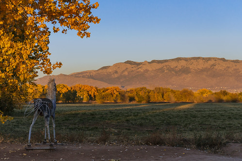 autumn sunset sculpture horse mountains newmexico fall leaves landscape day farm albuquerque foliage clear rockymountains nm ironhorse sandia lospoblanos grantcondit