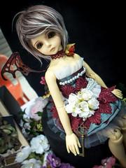 COSPAR³_Dolls_15