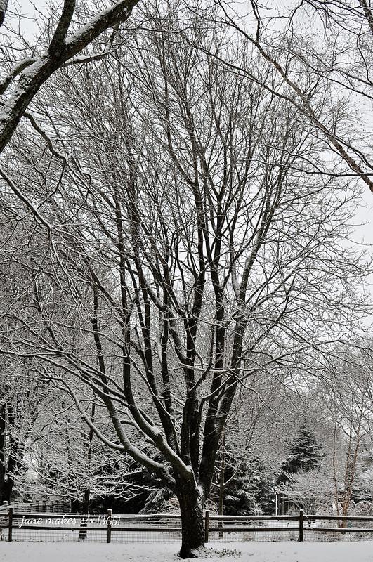 snow-010wm