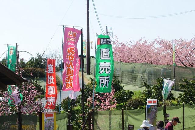 2014-03-16_00086_高松山