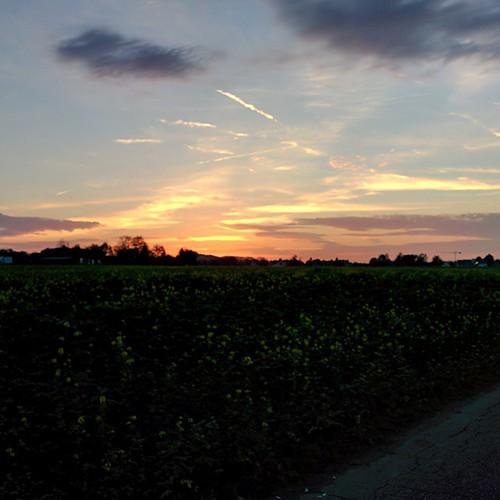 Deze avond #opdefiets, ja we werken tegenwoordig van zonsopgang tot -ondergang. #sunset #nofilter