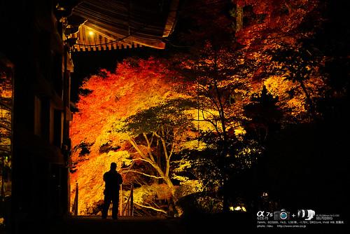 播州清水寺 DSC04671 (1)