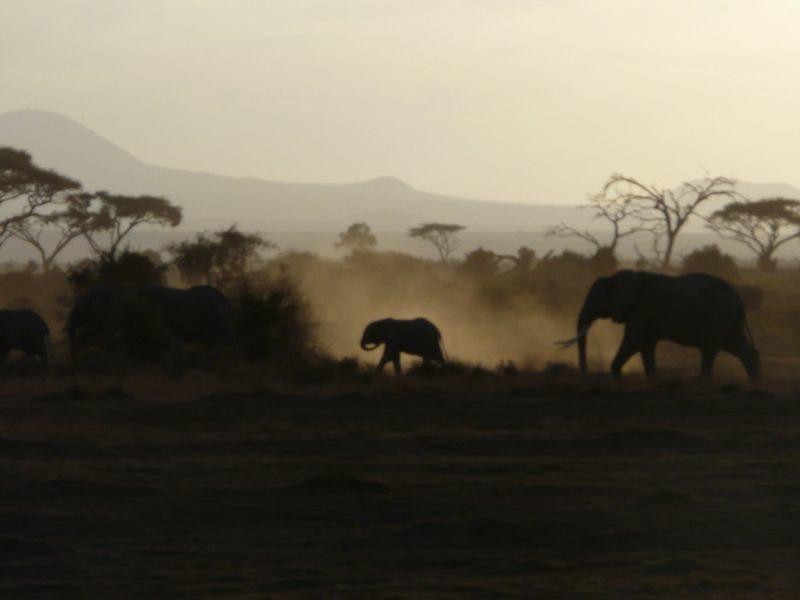 Kenia2007-0762