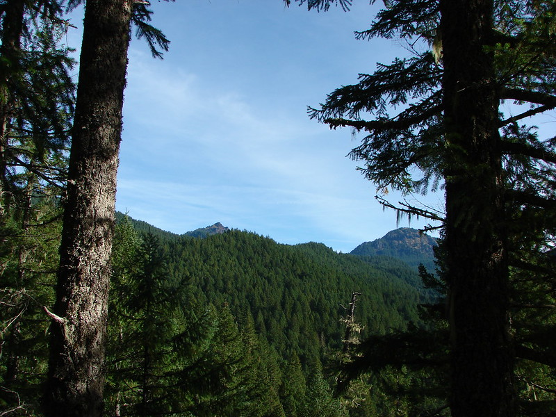 Iron Mountain from the 5 mile viewpoint along the Old Santiam Wagon Road