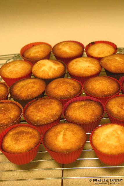 Boston Creme Cupcakes (12)