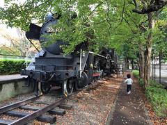 世田谷公園 D51